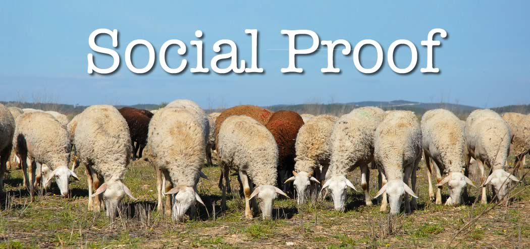 Social Proof Feat